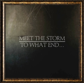 Review: Meet The Storm – to whatend…